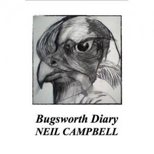 Bugsworth Diary