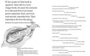Aquanauts ed. by Jon Stone & Kirsten Irving