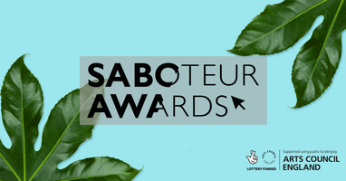 10 Great Reasons to Attend the Saboteur Awards Festival