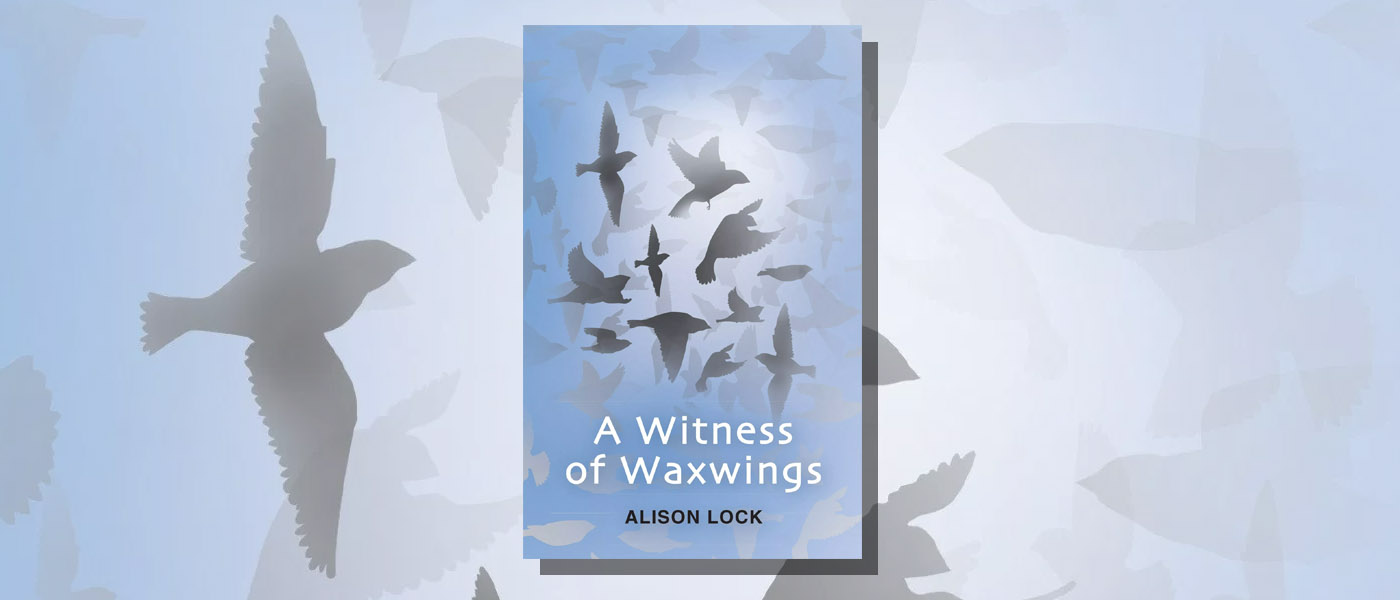 <i>A Witness of Waxwings</i> by Alison Lock