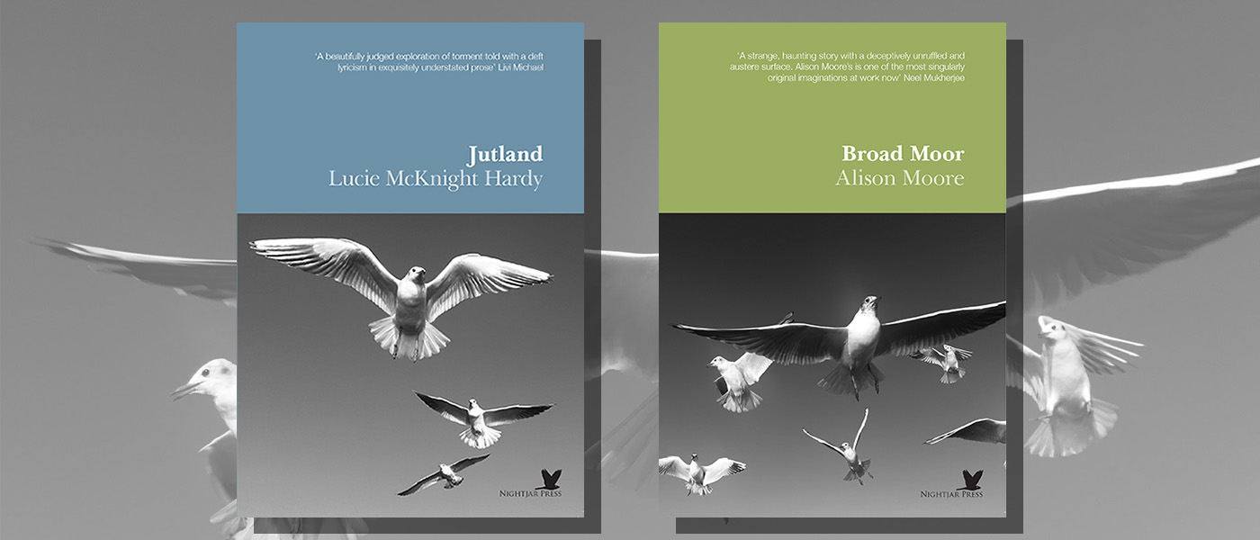 <i>Jutland</i> by Lucy McKnight Hardy & <i>Broad Moor</i> by Alison Moore