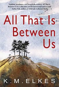 All That Is Between Us  by KM Elkes