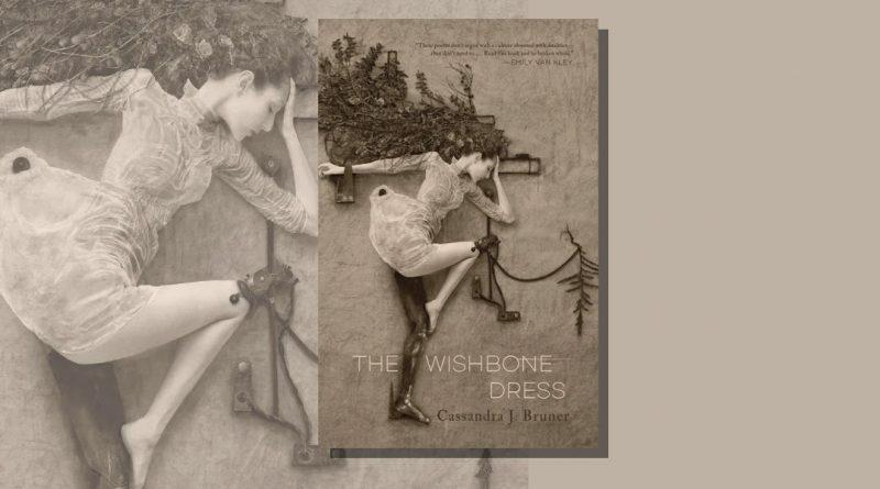 The Wishbone Dress book cover