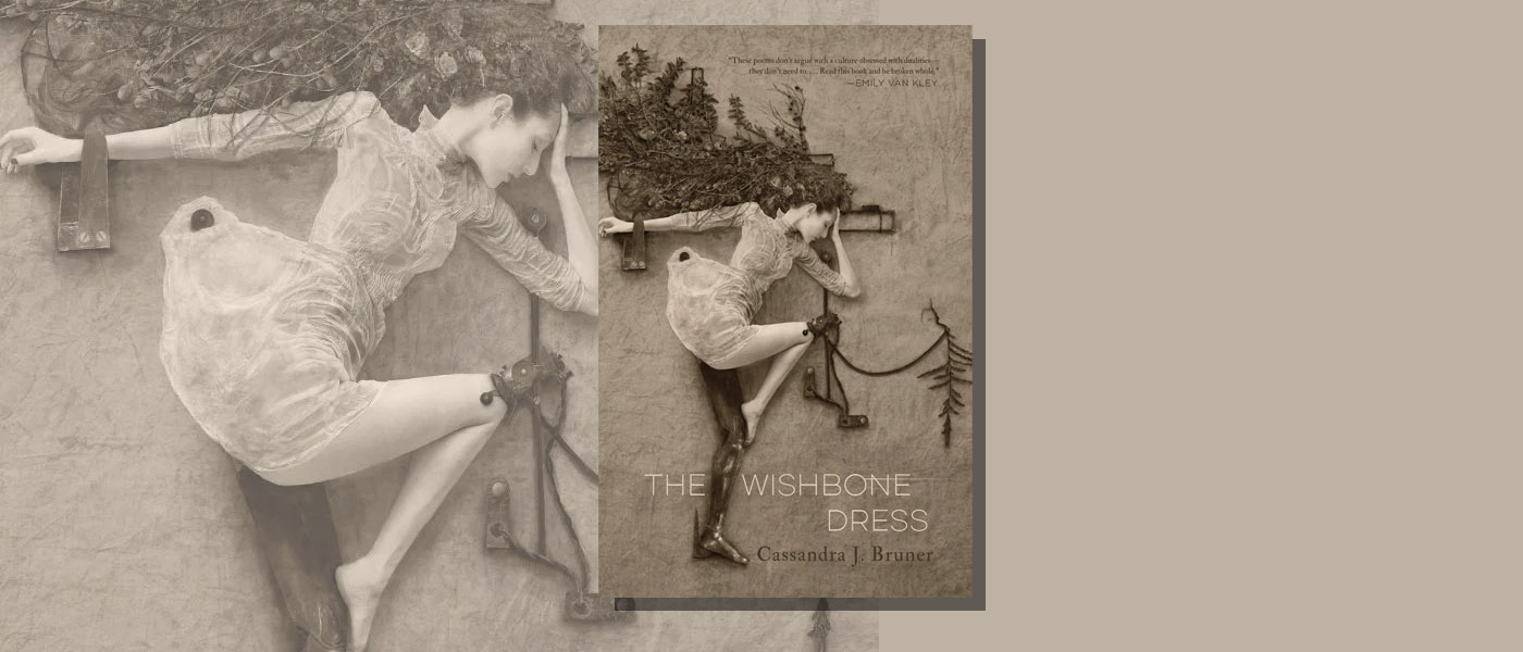 <I>The Wishbone Dress</I> by Cassandra J. Bruner
