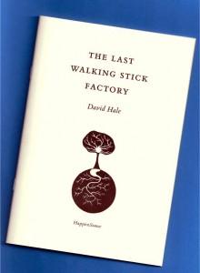 the_last_walking_4eda19b429a40