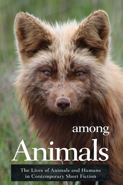 Among Animals Ashland Creek Press