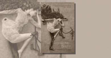 The Wishbone Dress book cover